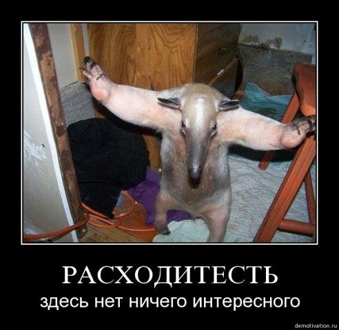 http://se.uploads.ru/t/tvd5N.jpg