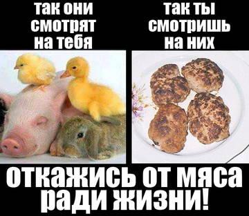 http://se.uploads.ru/t/vC3gU.jpg