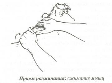 http://se.uploads.ru/t/vPKmT.jpg