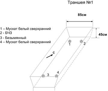 http://se.uploads.ru/t/wQsFd.jpg