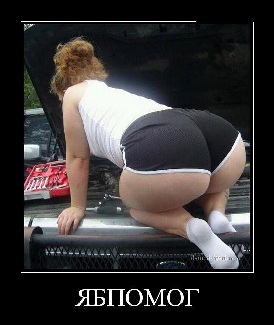 http://se.uploads.ru/t/xe7cu.jpg