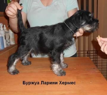 http://se.uploads.ru/t/y1ba5.jpg