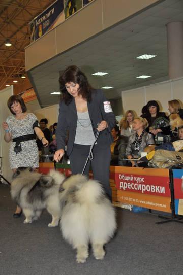 http://se.uploads.ru/t/yRAXk.jpg