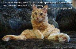 http://se.uploads.ru/t/yjcQV.jpg