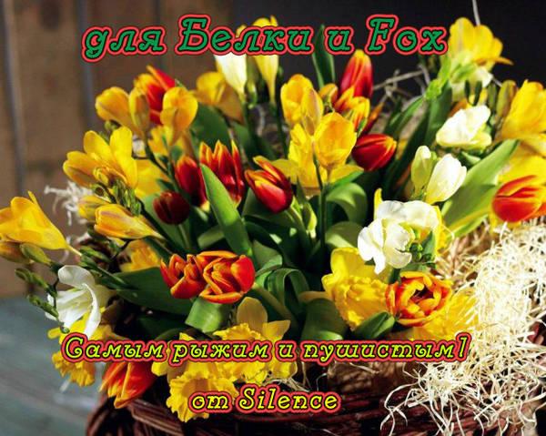 http://se.uploads.ru/t/ypqri.jpg