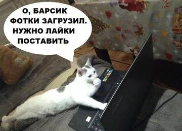 http://se.uploads.ru/t/zBwW0.jpg