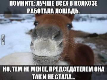 http://se.uploads.ru/t/zDTJ2.jpg