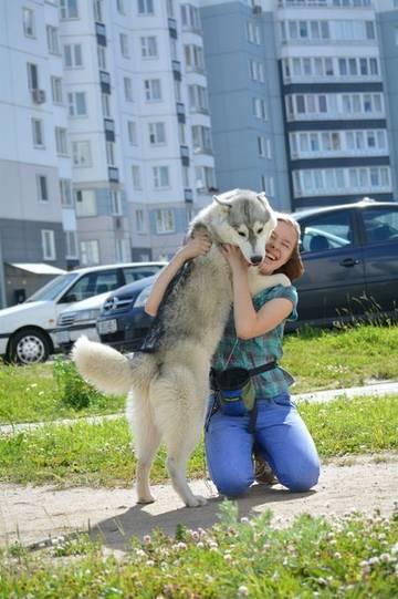 http://se.uploads.ru/t/zydPv.jpg
