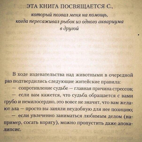 http://se.uploads.ru/uUOZ5.jpg