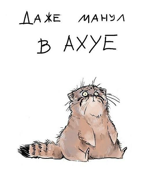 http://se.uploads.ru/wHu37.jpg