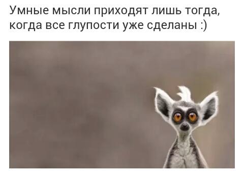 http://se.uploads.ru/zcmIg.jpg
