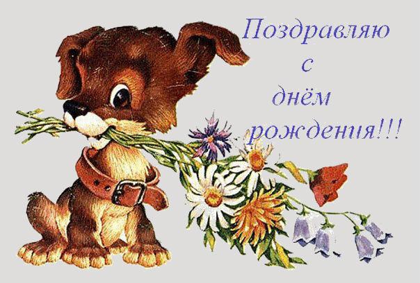 http://se.uploads.ru/75r1N.jpg