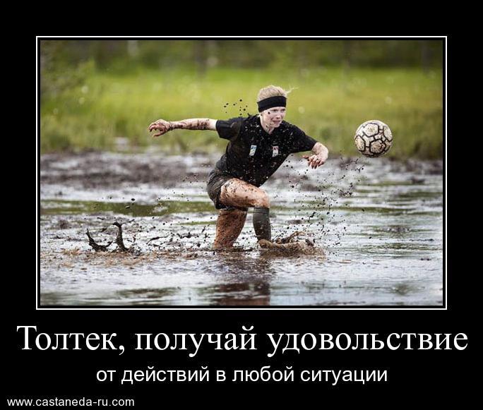 http://se.uploads.ru/BiEjA.jpg