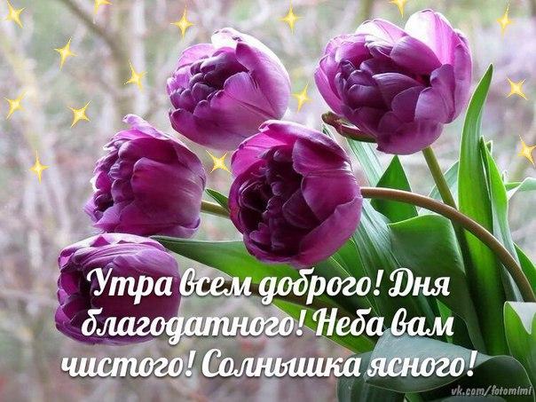 http://se.uploads.ru/S9CpT.jpg
