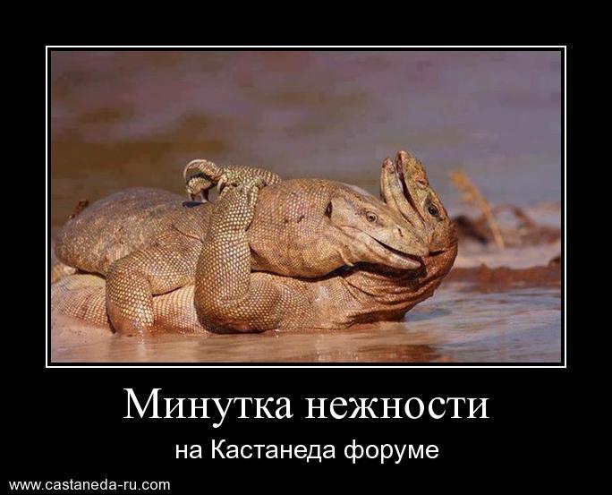 http://se.uploads.ru/Sfo59.jpg