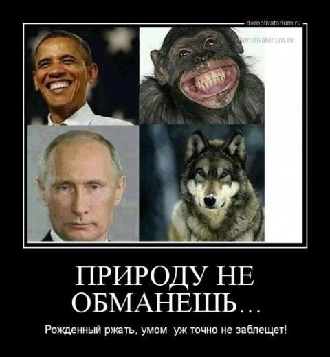 http://se.uploads.ru/VifQp.jpg