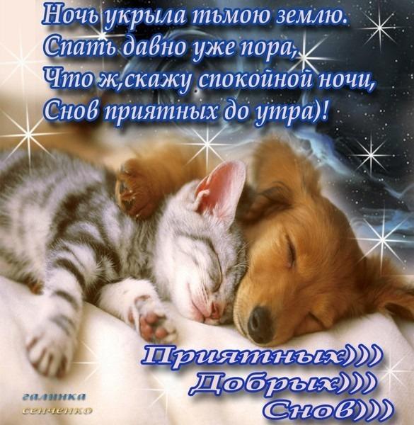 http://se.uploads.ru/bwQU2.jpg