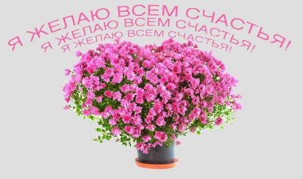 http://se.uploads.ru/dmfI3.jpg