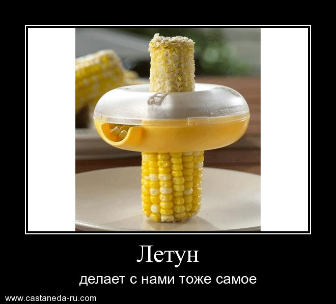 http://se.uploads.ru/jsb5d.jpg
