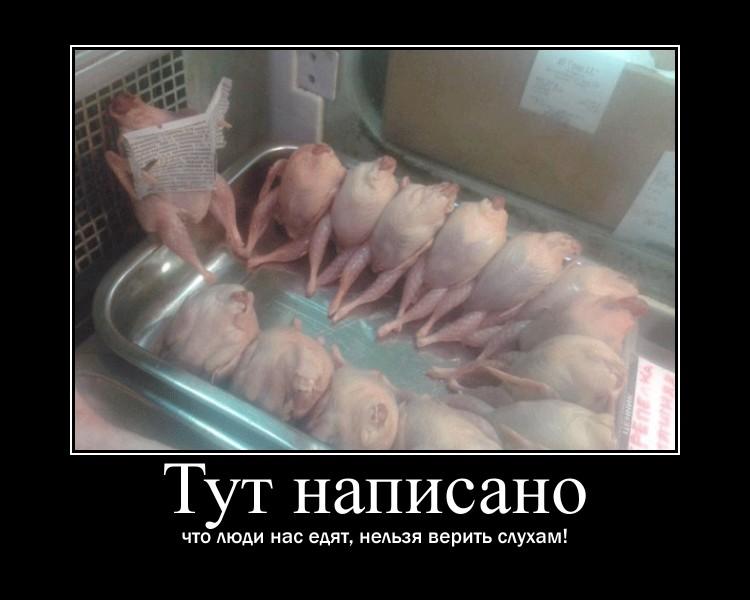 http://se.uploads.ru/sSHQw.jpg