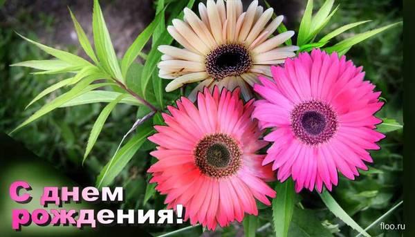 http://se.uploads.ru/t/1UuXF.jpg