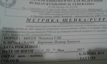 http://se.uploads.ru/t/7sbLX.jpg