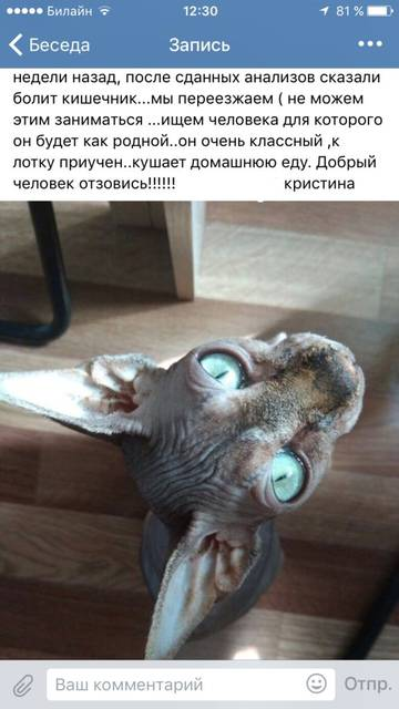 http://se.uploads.ru/t/8n6LU.jpg
