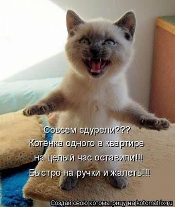 http://se.uploads.ru/t/BY6s4.jpg