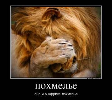 http://se.uploads.ru/t/CDJiQ.jpg