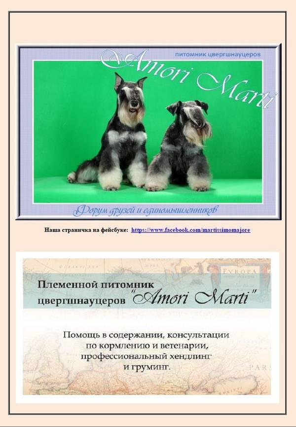 http://se.uploads.ru/t/DPCyb.jpg