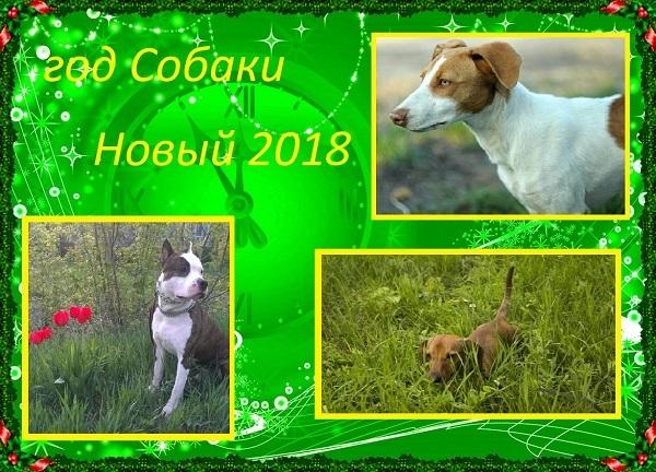 http://se.uploads.ru/t/EI1CL.jpg