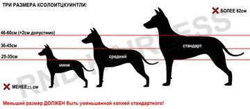 http://se.uploads.ru/t/LKEUd.jpg