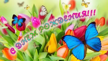 http://se.uploads.ru/t/MUGZ6.jpg