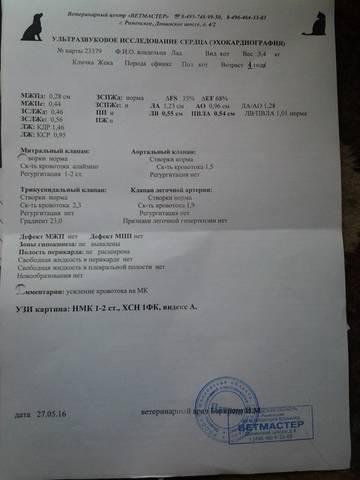 http://se.uploads.ru/t/T16IL.jpg