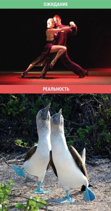 http://se.uploads.ru/t/TWHFB.jpg