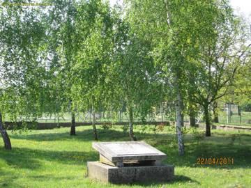 http://se.uploads.ru/t/fVGpO.jpg