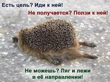 http://se.uploads.ru/t/g0A6y.jpg