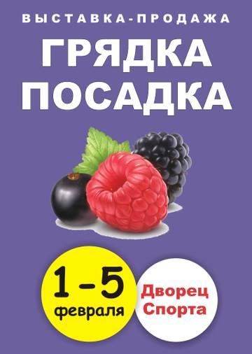 http://se.uploads.ru/t/mSsZd.jpg