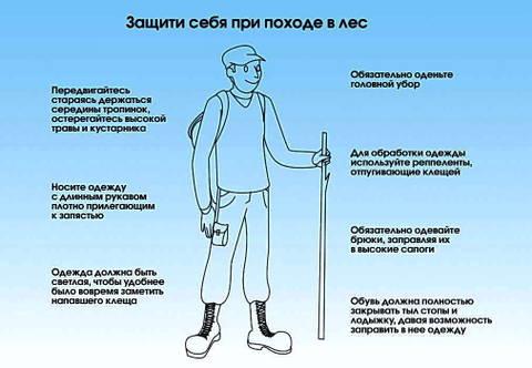 http://se.uploads.ru/t/trYLm.jpg