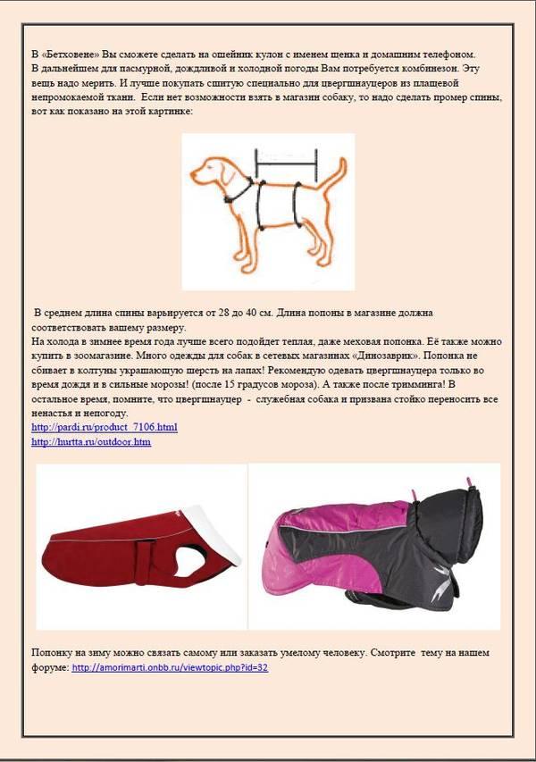 http://se.uploads.ru/t/zlgnH.jpg