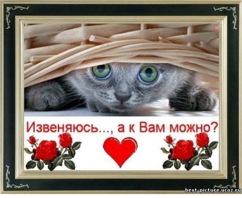 http://se.uploads.ru/yWk62.jpg